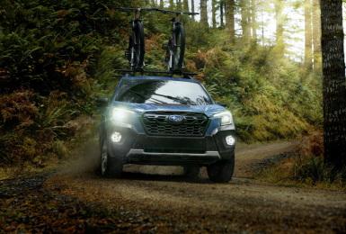 真正的森林人來了!《Subaru》發表美規小改《Forester》但重點是越野版《Forester Wilderness》