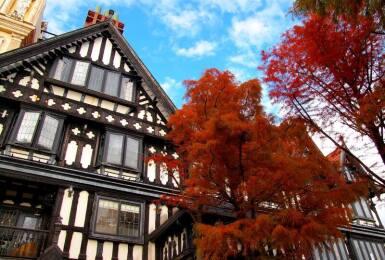 秋天到《奧萬大》賞楓攻略全公開|入住清境老英格蘭、合歡觀日出、到武界走訪深山「楓」景